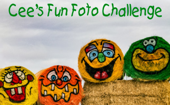 cees-fun-foto-challenge